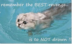 remember the BEST revenge..  is to NOT drown !!