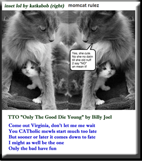 """lolcat Temptation"" (TTO ""Only The Good Die Young"" by Billy Joel)"