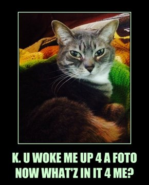 K. U WOKE ME UP 4 A FOTO NOW WHAT'Z IN IT 4 ME?