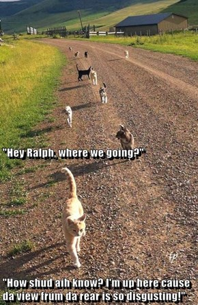 """Hey Ralph, where we going?"" ""How shud aih know? I'm up here cause da view frum da rear is so disgusting!"""