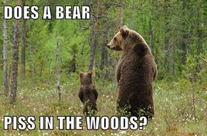 DOES A BEAR  PISS IN THE WOODS?