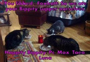 You fibbed ! Foxkatt! So we ate your Bippity supper ourselves.   Happity Bippity! Pc, Max, Taeo, Luna