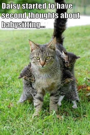 Daisy started to have second thoughts about babysitting...