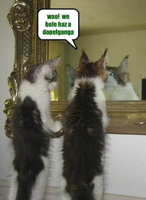 wao!  we bofe haz a dopelganga