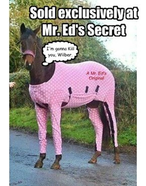 A Mr. Ed's Original