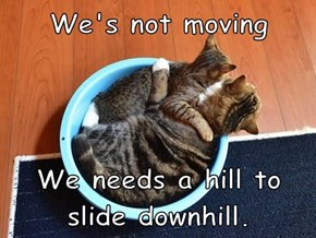 We's not moving  We needs a hill to slide downhill.