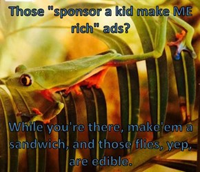 "Those ""sponsor a kid make ME  rich"" ads?   While you're there, make'em a sandwich, and those flies, yep, are edible."