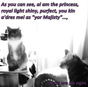 "As you can see, ai am the princess, royal light shiny, purfect, you kin a'dres mei as ""yor Majisty""...,   Here we go agin."