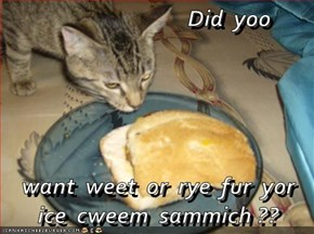 Did  yoo  want  weet  or  rye  fur  yor  ice  cweem  sammich ??