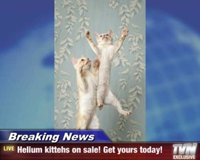 Breaking News - Helium kittehs on sale! Get yours today!