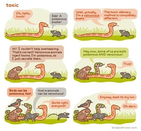 The Difference Between Poisonous And Venomous Animals