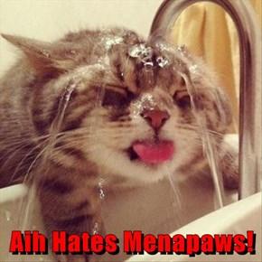 Aih Hates Menapaws!