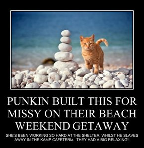 PUNKIN BUILT THIS FOR MISSY ON THEIR BEACH WEEKEND GETAWAY