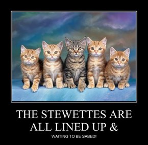 THE STEWETTES ARE ALL LINED UP &