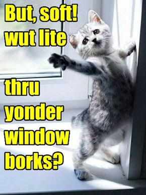 Who borked da window?