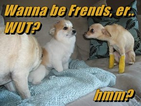 Wanna be Frends, er.. WUT?                                hmm?