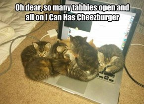 Oh dear, so many tabbies open and all on I Can Has Cheezburger