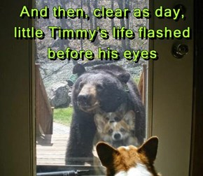 And then, clear as day, little Timmy's life flashed before his eyes