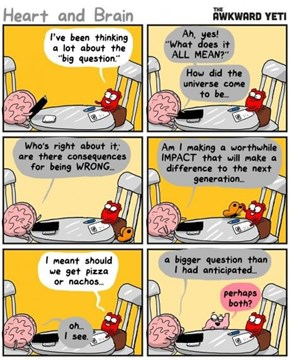 A Conversation Between The Heart and The Brain