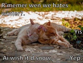 R'memer wen we hates winter?. Yis Ai wish it'd snow.           Yep.