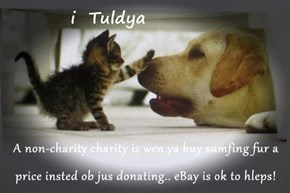 A non-charity charity is wen ya buy sumfing fur a price insted ob jus donating.. eBay is ok to hleps!