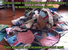 Always color-coordinate your house things to match your fuzzy friend.   Cuts down on all cleaning time and cost.