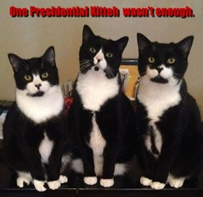 One Presidential Kitteh  wasn't enough.