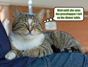 Wait until she sees the grasshopper I left on the dinner table.