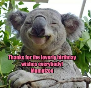 Thanks for the loverly birthday wishes everybody! Momofzoo