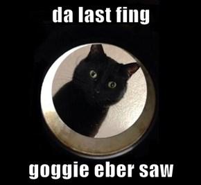 da last fing  goggie eber saw