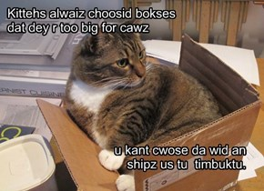 Kittehs alwaiz choosid bokses  dat dey r too big for cawz