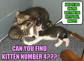 CAN YOU FIND KITTEN NUMBER 4???