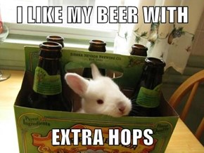 Brewer Bunny
