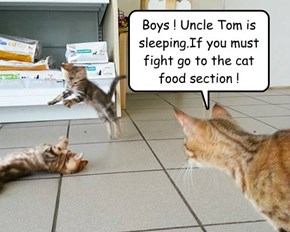 Boys ! Uncle Tom is sleeping.If you must fight go to the cat food section !