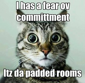Rooms shud nawt be padded!