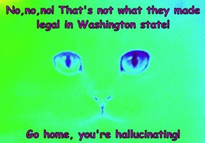 No,no,no! That's not what they made legal in Washington state!   Go home, you're hallucinating!