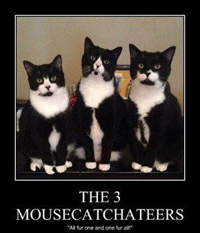 THE 3 MOUSECATCHATEERS