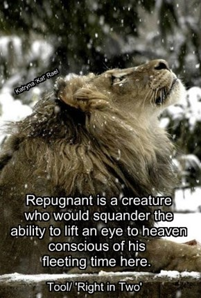 Repugnant is a creature  who would squander the  ability to lift an eye to heaven conscious of his fleeting time here.