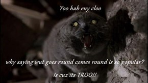 Yoo hab eny cloo  why saying wut goes round comes round is so popular?  Is cuz its TROO!!