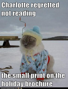 Charlotte regretted not reading  the small print on the holiday brochure