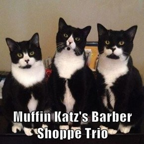 Muffin Katz's Barber Shoppe Trio