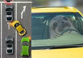 Traffic Can Get Awkward