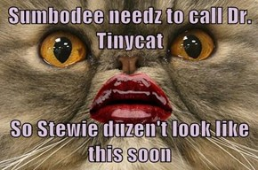 Sumbodee needz to call Dr. Tinycat  So Stewie duzen't look like this soon
