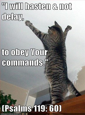 """I will hasten & not delay, to obey Your commands."" (Psalms 119: 60)"