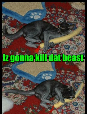 Iz gonna kill dat beast