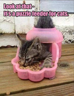 Look at that -  it's a puzzle feeder for cats.