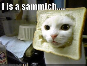 I is a sammich.....