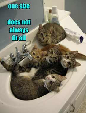 Kitteh is Having That Sinking Feeling Again