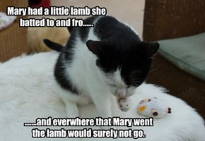 Mary had a little lamb she batted to and fro......
