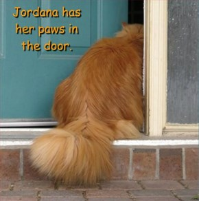 Jordana has her paws in the door.